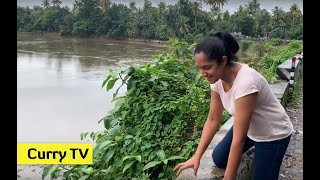 Vlog - 2019 Kerala flood - one week after the flood. Curry TV Episode 34
