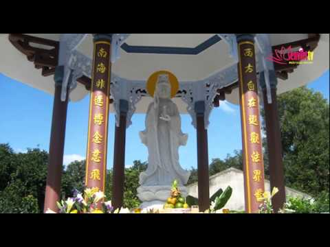 Tin Phật giáo Video SenViet TV 151