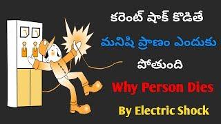Why Person Dies By Electric Shock In Telugu || Telugu Knowledge Videos By Telugu Gyan