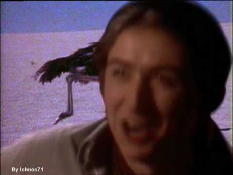 Talk Talk - It's My life (US version)