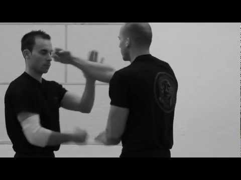 Ip Ching + Leung Ting Wing Chun Kung Fu - Ip Man Stil - training - fight - lat sao - kuo sao - demo Image 1