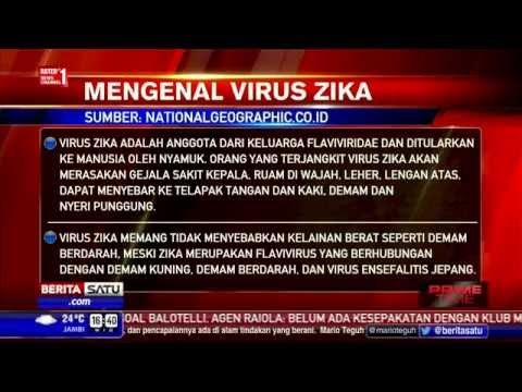 Mengenal Virus Zika