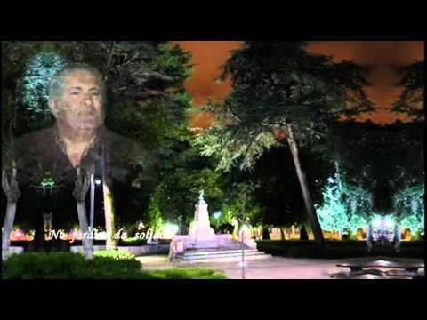 António Pelarigo   Jardim Abandonado video