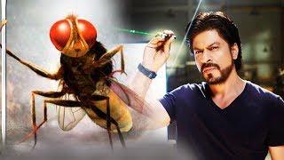 download lagu Shahrukh Khan's Next Film With Makkhi Director Revealed gratis
