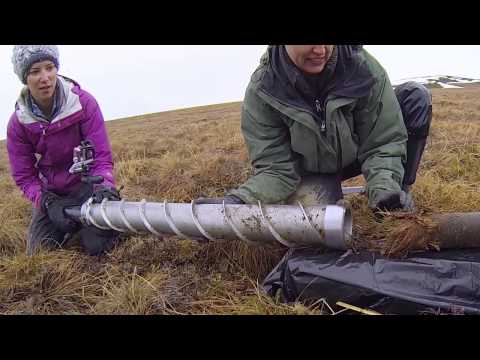 Arctic soils key to future climate - Science Nation