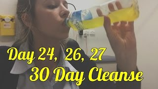 Day 24, 26 & 27 | 30 Day Cleanse