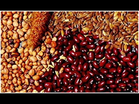 India Seed Market Outlook to FY'2020