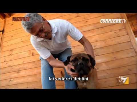 Duduismo Radiofonico #9 - Aiace e Dudù - Mix 24