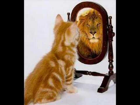 Como Mejorar La Autoestima