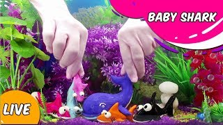 Baby Shark Song For Kids | Animal Songs For Children | Clay Sharks in Aquarium – Sing And Dance
