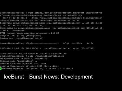 BURST Node Installation script and tutorial!