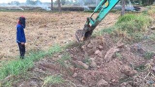 มี 2 สิ่งนี้หากินง่าย ?? Dog & Excavator  งานนี้สนุก