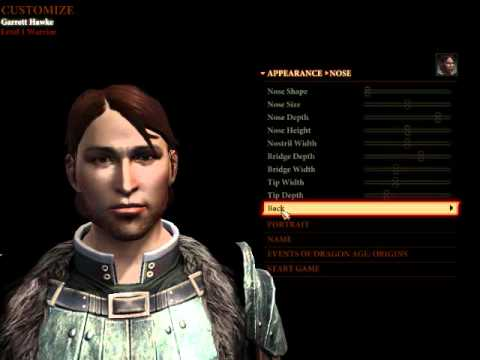 Dragons Age 2 Characters Dragon Age 2 Character