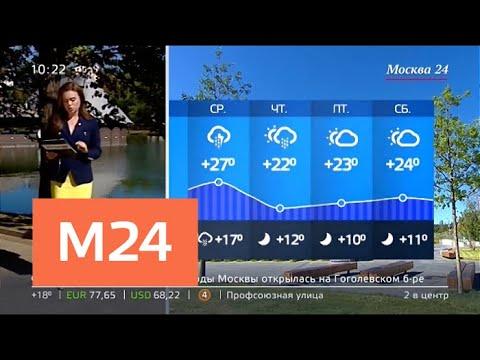 """""""Утро"""": атмосферное давление будет в норме в Москве 14 августа - Москва 24"""