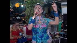 download lagu Lungset - Supra Nada  Live In Karanglo Pengkok gratis