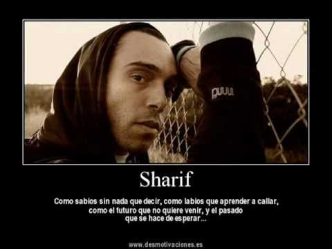 sharif-triste cancion de amor(con letra)