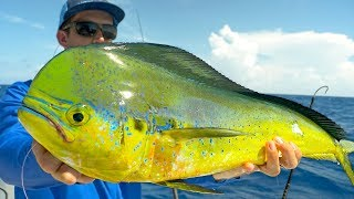 Fishing for Dolphin, Tuna and Sharks in the Florida Keys