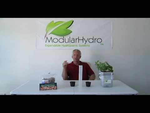 Grow Stones Grow Media For Use in Hydroponics Systems