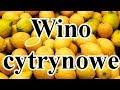 Wino Cytrynowe Cz 1 Eksperyment mp3