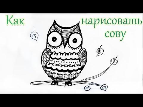 Видео как нарисовать альбом