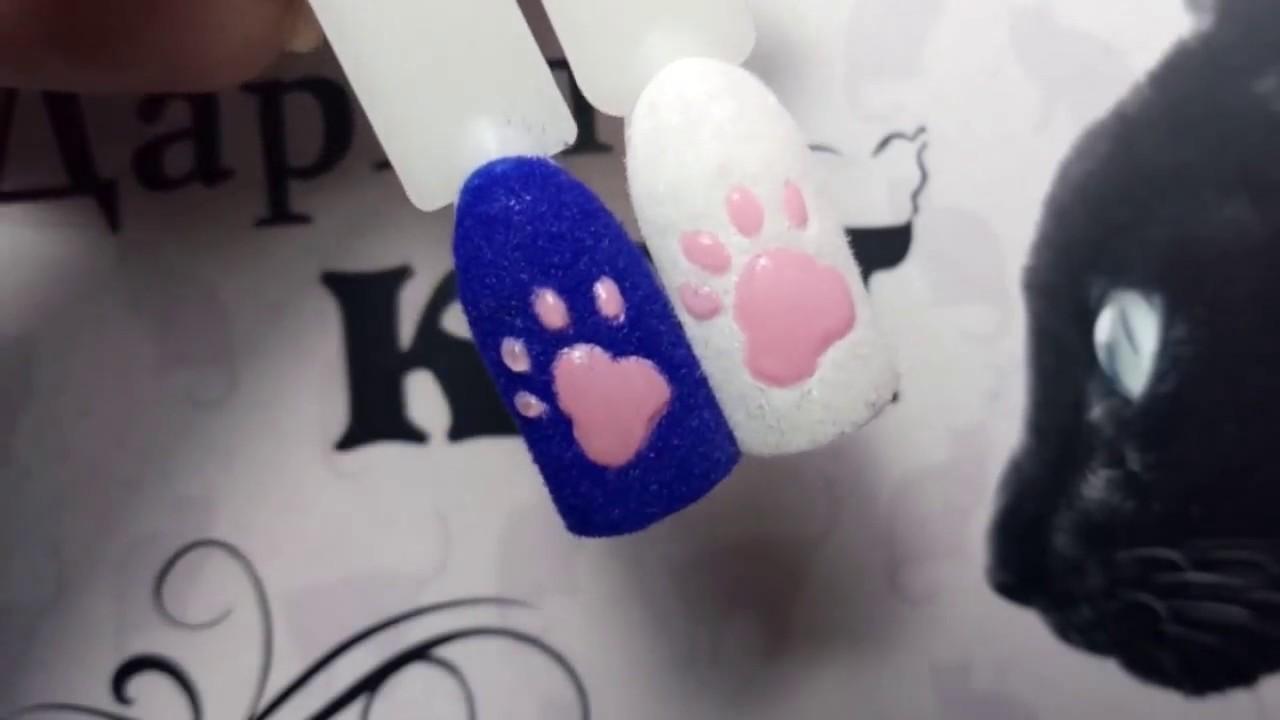 Фото лапки кошки на ногтях