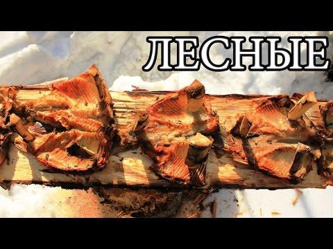 Дикая кухня - ЖАРЕНАЯ РЫБА НА ДОСКЕ   Деревянные гвозди - Planked Fish