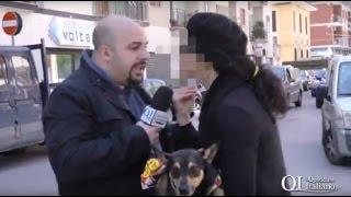 Bari, follia a San Pasquale: raschia le auto e spalma cacca di cane