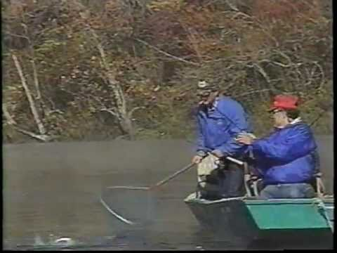 Dan's Fish 'N' Tales® White River Float Trip For Trout