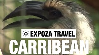 The Caribbean Travel Video Guide