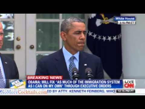 Obama on Immigration executive order: I can't stand by and do nothing
