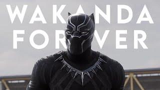 Download lagu WAKANDA FOREVER | See You Again