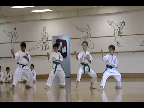 Shotokan Karate Purple Belt