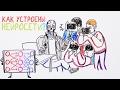 Как устроены искусственные нейронные сети? — Научпок