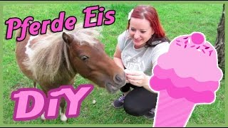 Pferde Eis selber machen - DiY - How to make