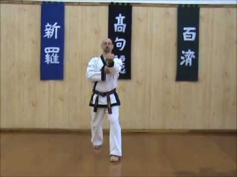 Tang Soo Do - Single Step Drill - Sequence 2 Image 1