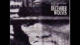 Watch December Wolves My Bible video