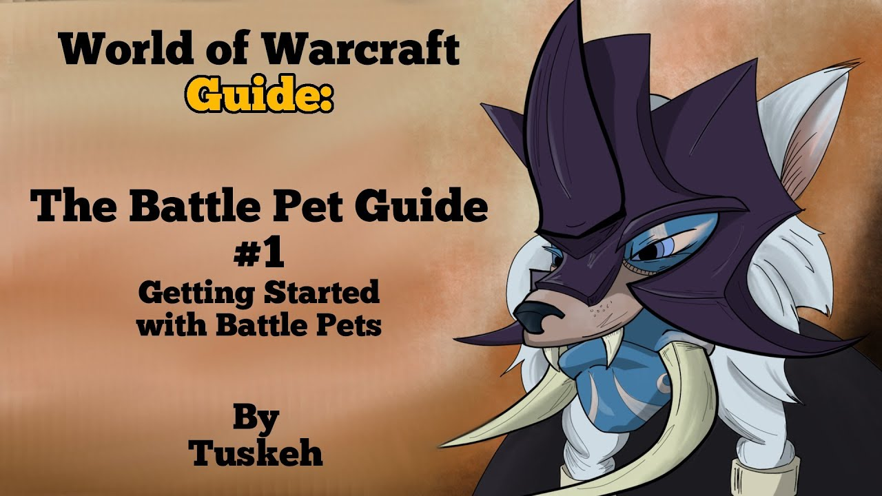 wow how to make pet battle