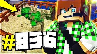 Minecraft ITA - #836 - A CACCIA DI TARTARUGHE