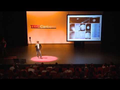 How playful scientists innovate | Steve Lee | TEDxCanberra