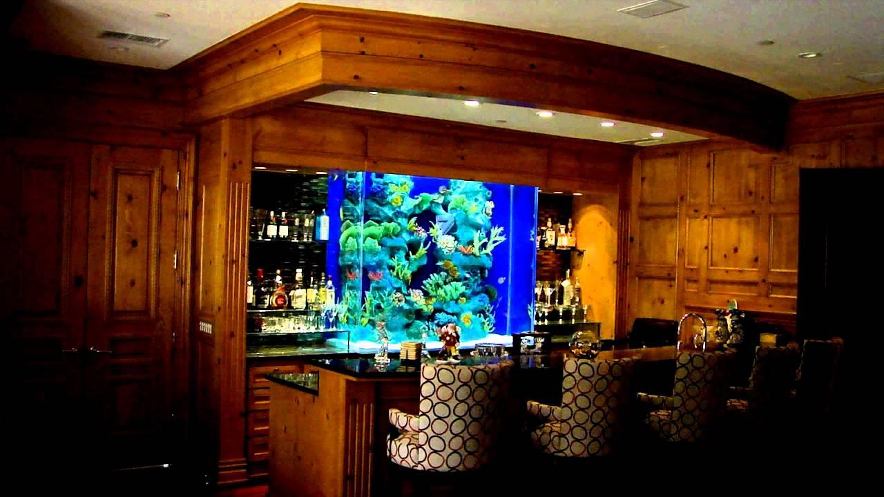 The Aquarium Connection - Beautiful Bar Aquarium - YouTube