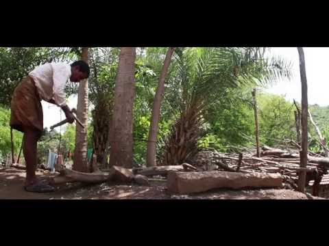 Malnutrition Crisis in India's Tribal Children | Video | Raksha Changappa
