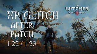 The Witcher 3 GOTY - XP Glitch After Patch 1.30 - 2016