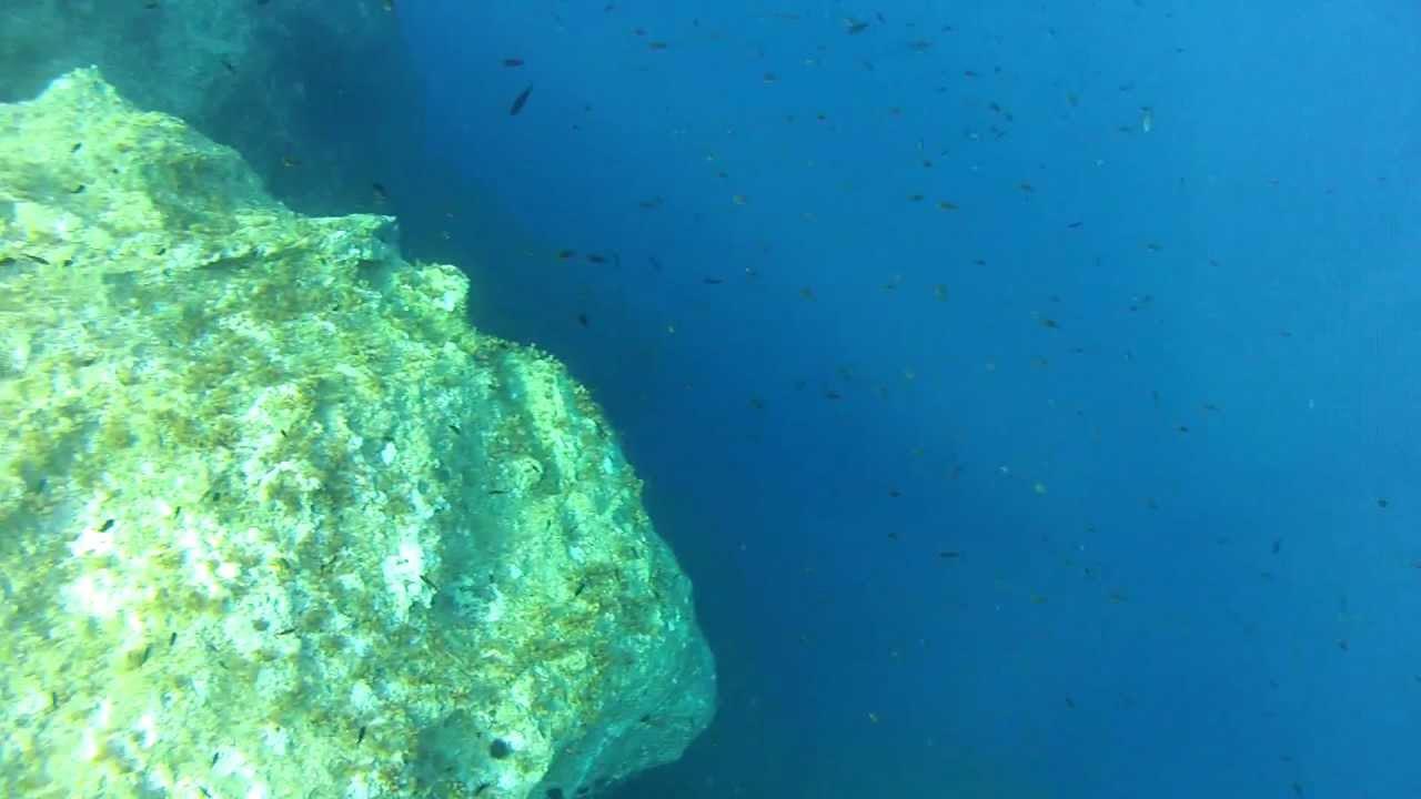 Deep Water Spearfishing Deeper Water Spearfishing