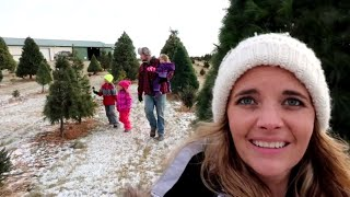 Our Fun Family Christmas tree hunt!