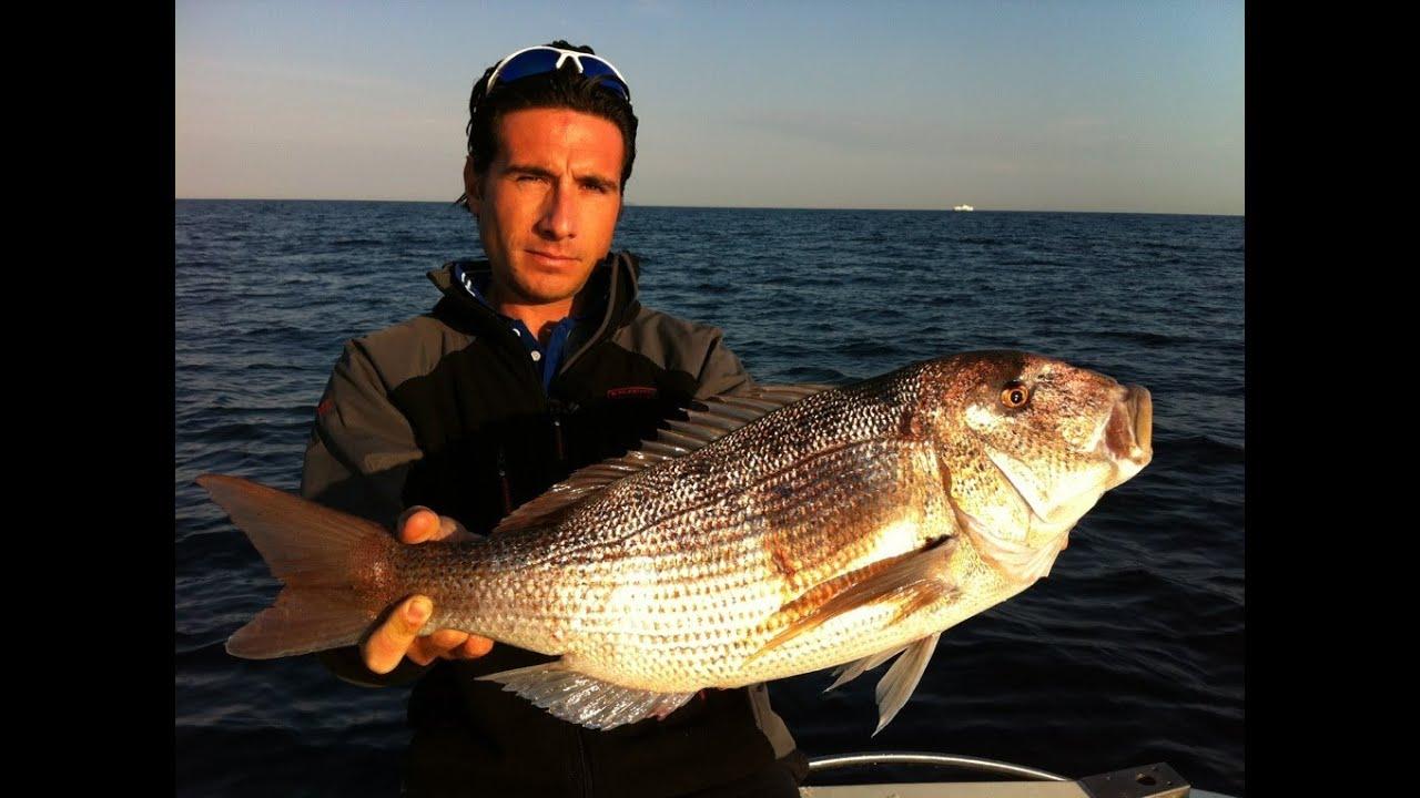 Pesca Alla Traina Pesca Dentici a Traina