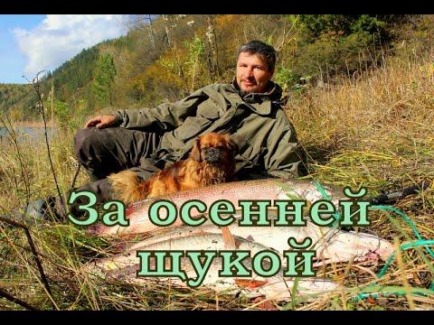отчет о рыбалке на красноярском море