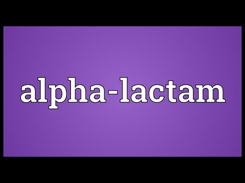 Header of Alpha-Lactam