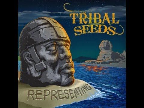 Tribal Seeds Band Tribal Seeds Representing