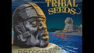 Tribal Seeds Representing Full Album New 2014