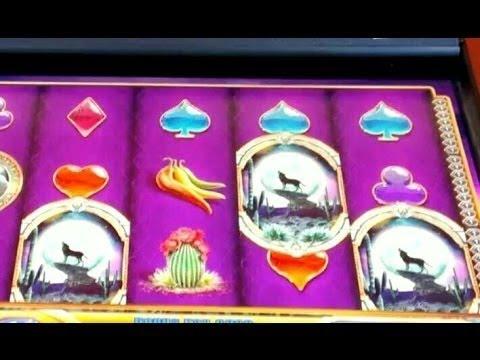 Desert Moon/Circue De Masquerade Bonus WMS Slot